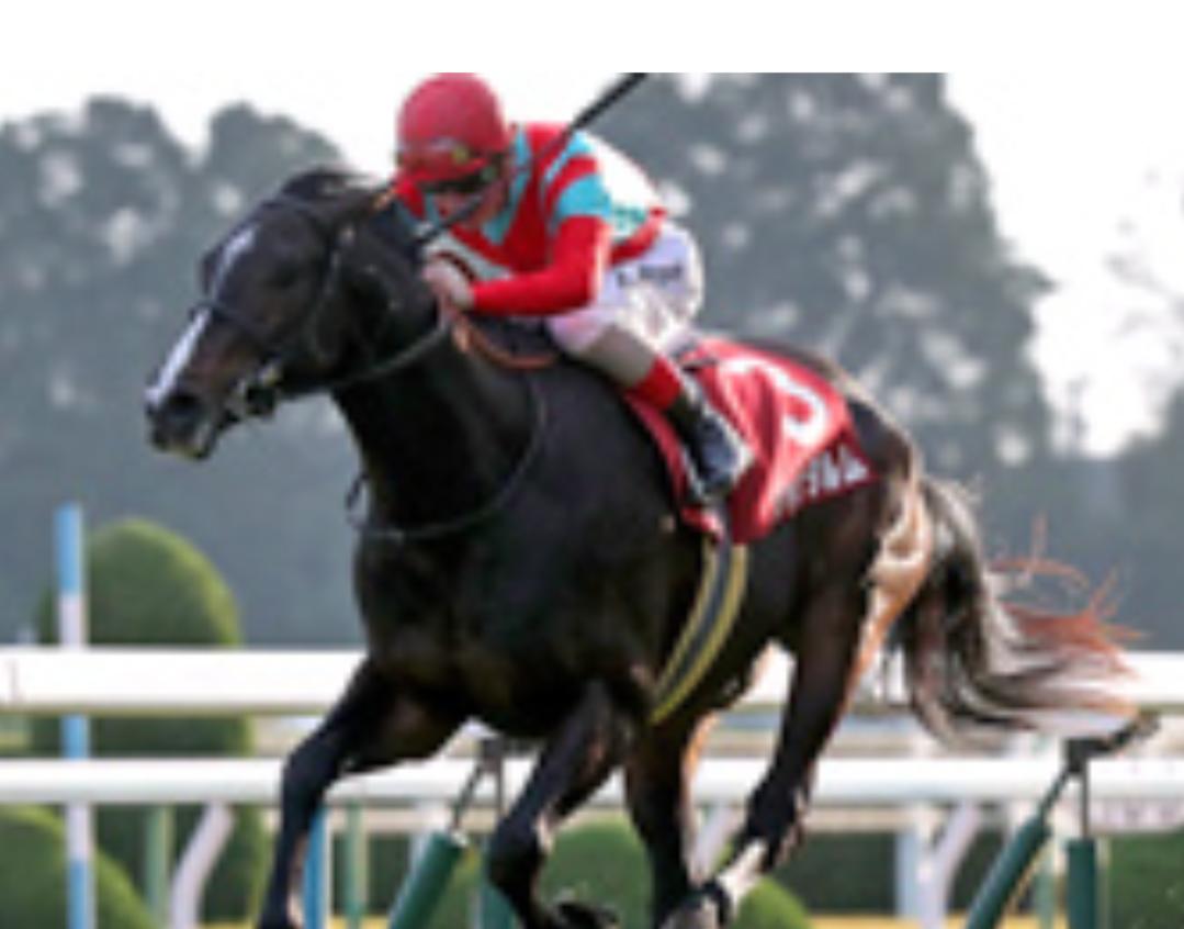 【ホープフルS】ジャンダルムは武豊を有馬記念に続くGI制覇に導くことができるのか