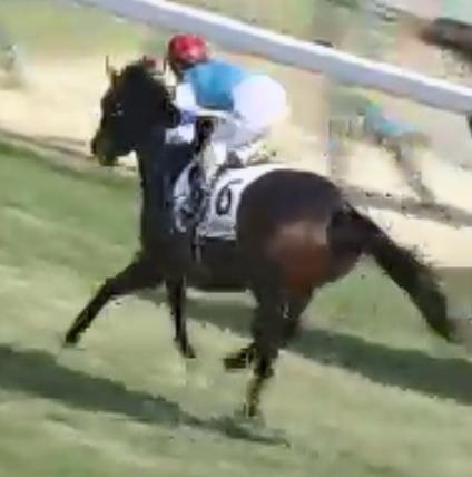 【京成杯】戸崎の重賞4連勝を無敗馬が2戦目での重賞制覇で阻めるか。