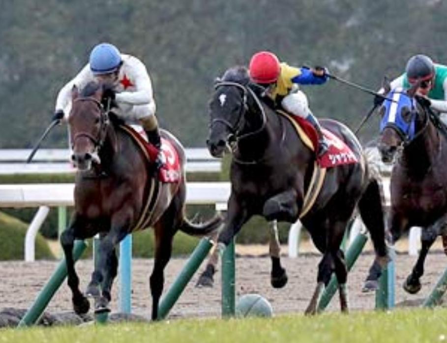 【日経新春杯】ミッキーロケットは57.5㎏を克服し、連覇を飾れるか。