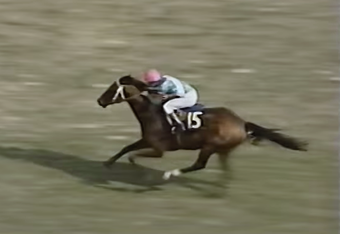 【天皇賞・春】馬番別に思い出の勝ち馬を列挙して感傷に浸る
