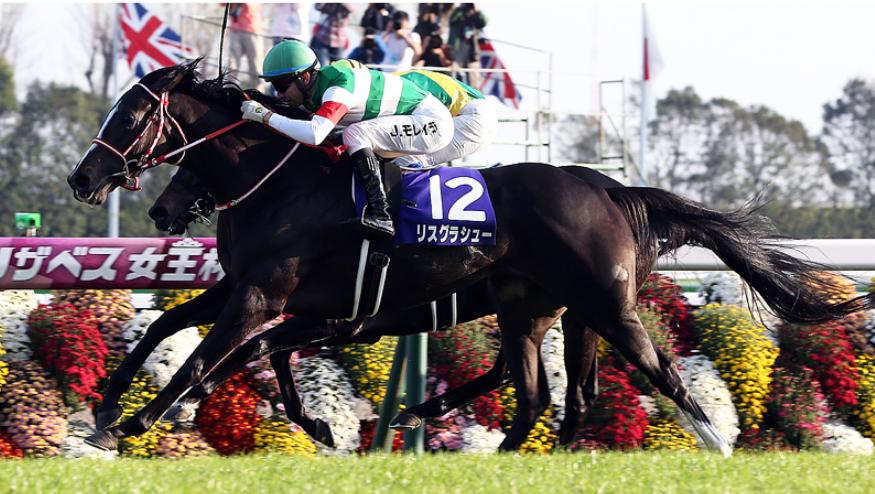 【リスグラシュー】悲願のGⅠ制覇を成し遂げた最強馬の今後とその可能性