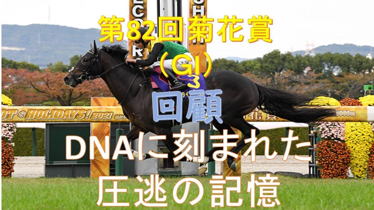 【第82回菊花賞(G1):回顧】DNAに刻まれた圧逃の記憶。